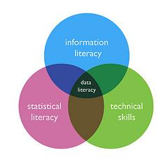 justgrimes-data-literacy