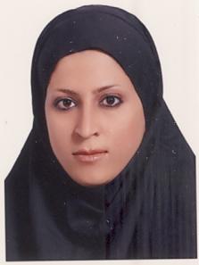 PariHosseinzadeh-lib2mag